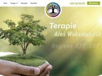 Regresní terapie - Aleš Waksmundský