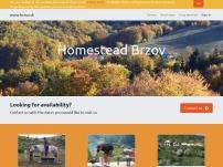 Statok Brzdov