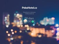 Hotel Peko ***