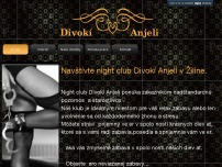 Divokí Anjeli