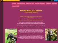 MISTERA BELECO KENNEL