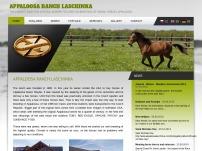 Jezdecký klub Appaloosa Golden Horse Club