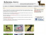 Bohemia Atevy