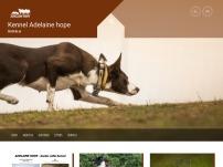 Chov a výcvik psů Borohrádek