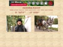 František Plecitý