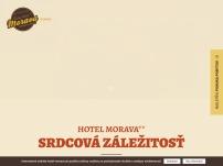 Hotel Morava**