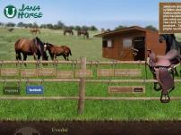 Jezdecké potřeby Jana Horse